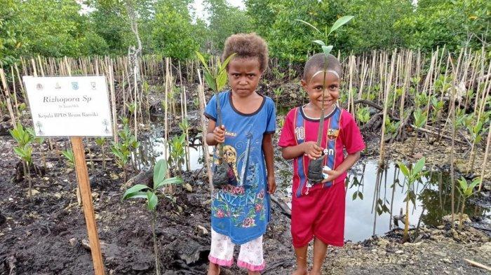 Dua Ribu Hektar Kawasan Mangrove Papua Barat Rusak, BRGM Gencar Lakukan Rehabilitasi