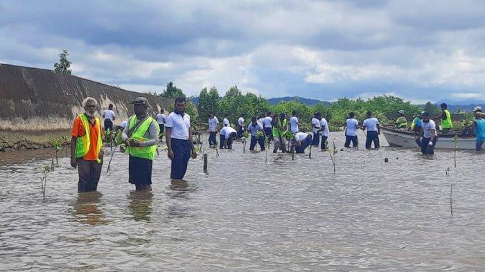 Cegah Abrasi, Lantamal XIV Lakukan Penanaman 2.500 Mangrove di Sekitar Bandara Deo Sorong