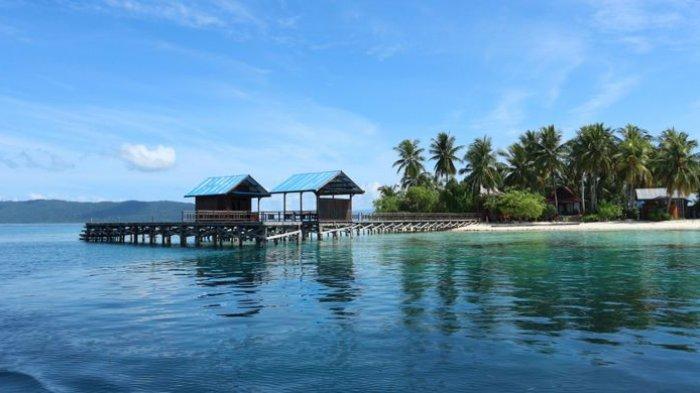 2 Lokasi Menyelam yang Ramah bagi Pemula di Raja Ampat Papua Barat