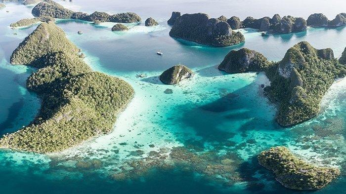 Daftar Lokasi Menyelam Terbaik di Raja Ampat, Ada 8 Spot yang Bisa Kamu Kunjungi