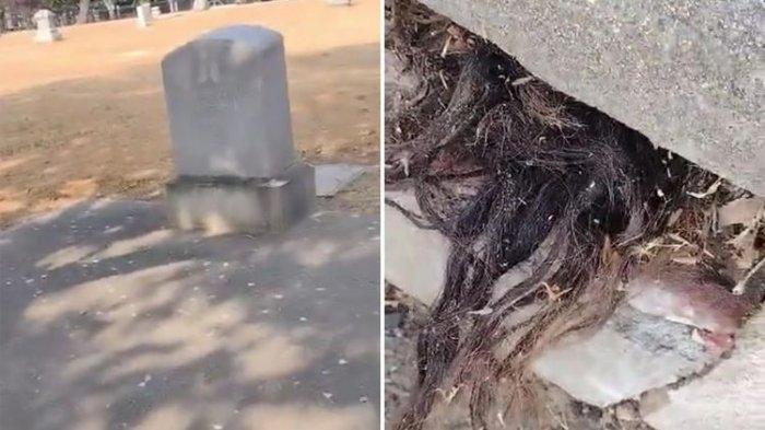 Viral Video Rambut Rambut Keluar dari Kuburan Tua 100 Tahun, Ini Pengakuan Perekam