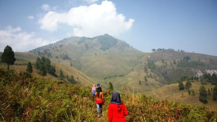 Daftar Nama Gunung di Sumatra, Berapa Ketinggiannya?