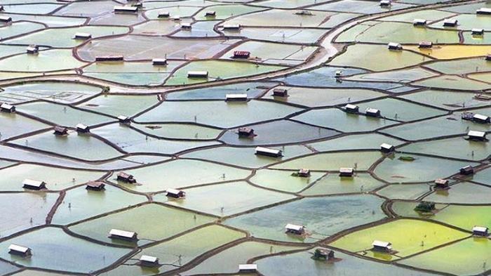 Daftar Desa di Kecamatan Palibelo Kabupaten Bima Provinsi Nusa Tenggara Barat