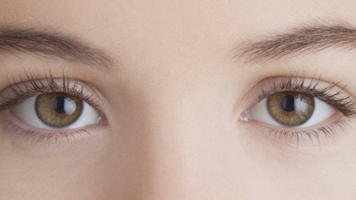 Mata adalah Satu dari Lima Indera Terpenting Dalam Tubuh Manusia, Jaga dengan Cara Ini