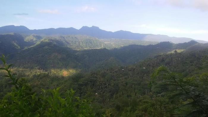 Daftar Nama Gunung di Provinsi Sulawesi Barat dan Ketinggiannya