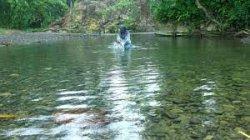 17 Nama Sungai di Sumatera Utara