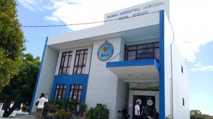 BNN Kota Kupang, Alamat, Nomor Telepon dan Call Center