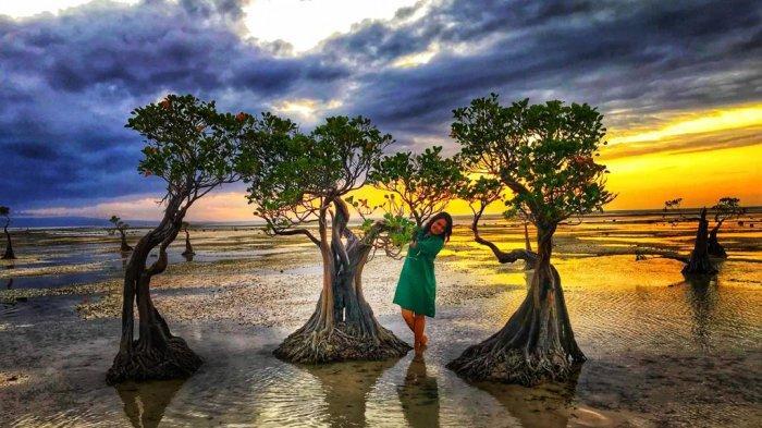 Menari Bersama Pohon Magrove Saat Sunset di Pantai Walakiri Kabupaten Sumba Timur, Provinsi NTT