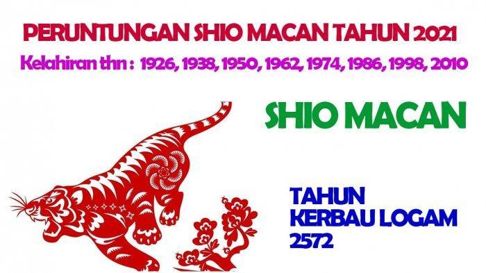 Ramalan Shio Macan di Tahun Kerbau Logam 2572, Karisma Lagi Tinggi