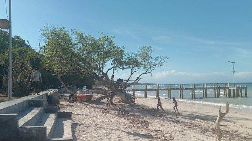 Pohon 'Menyala' di Pantai Kuta atau Pantai Loda Lima