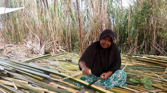 Melihat Pengolahan Pucuk Nipah dari Sarang Buaya Singkil Lama