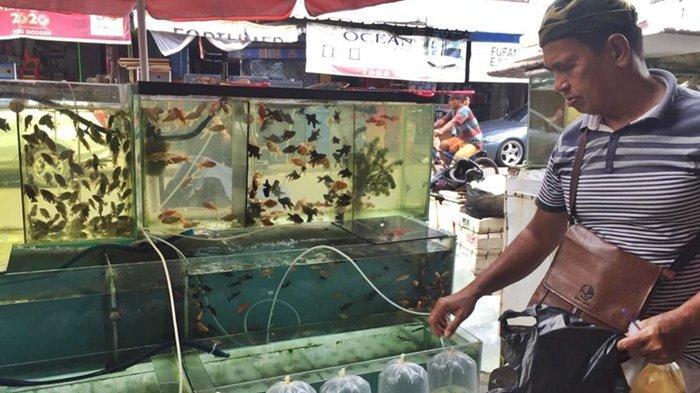 Pasar Burung Kota Palembang