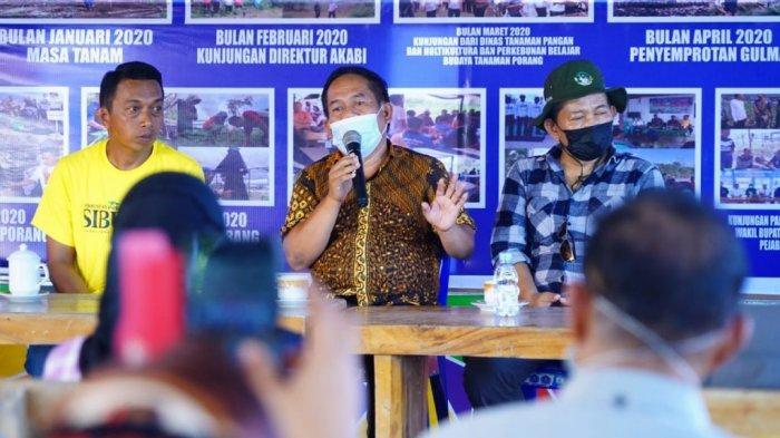 Pemkab Majene Serap Ilmu Budidaya Porang Milik Wakil Ketua DPRD Sulsel Syaharuddin Alrif