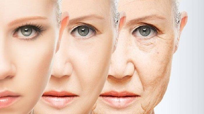 Sebaiknya Hindari 10 Makanan Berikut karena Dipercaya Dapat Mempercepat Proses Penuaan