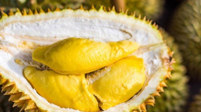 Tips Makan Buah Durian Agak Tak Meninggalkan Bau di Mulut