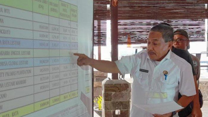 Harga TBS Kelapa Sawit di Sulawesi Barat Terus Naik