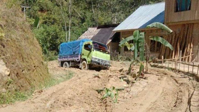 Tak Kunjung Diperbaiki, Warga Kecamatan Bambang, Mamasa Tanam Pisang di Tengah Jalan