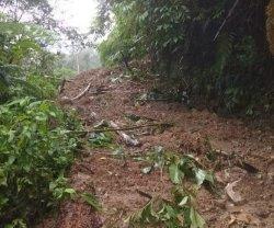 Longsor Tutup Jalan Desa Salubanua Mambi Mamasa, 40 KK Terisolir