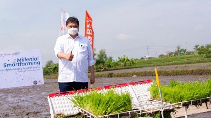 Menko Airlangga Hartarto berkesempatan meninjau lokasi pertanian di Klaten