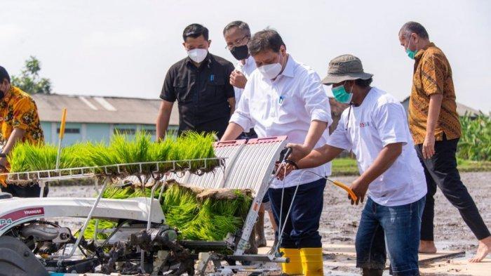 Menko Airlangga meninjau lokasi pertanian yang dikelola petani millennial