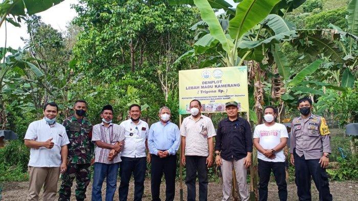 Luncurkan Demplot di Desa Mirring, Unsulbar Dorong Masyarakat Sadar Potensi Budidaya Lebah