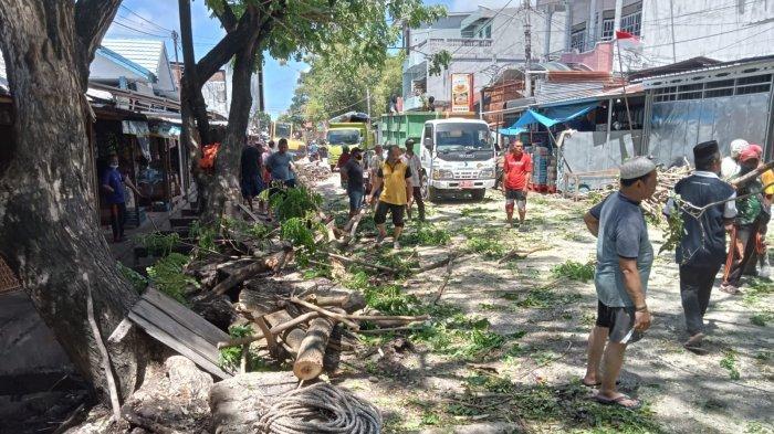 Cegah Pohon Tumbang, DLHK Majene Lakukan Penertiban