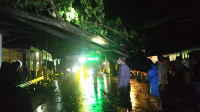 Pohon Tumbang di Jembatan Pamboang Majene