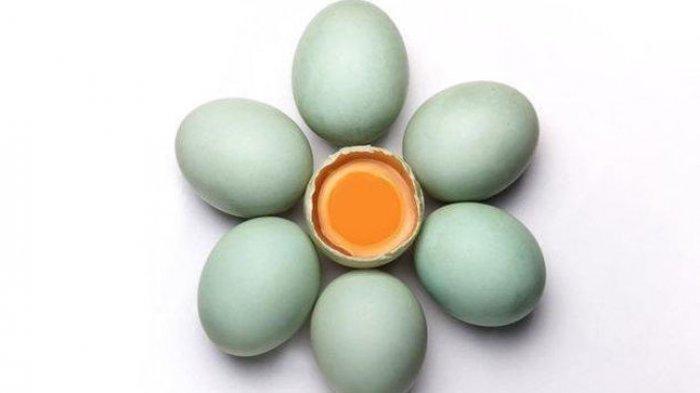 Cara Mudah Membuat Telur Asin, Bisa Pakai Telur Ayam Atau Telur Bebek