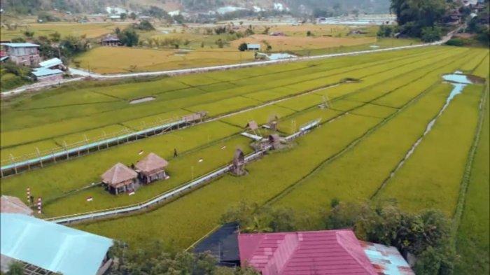 Profil Desa Tondok Bakaru Mamasa, Destinasi Pariwisata Unggulan Sulbar