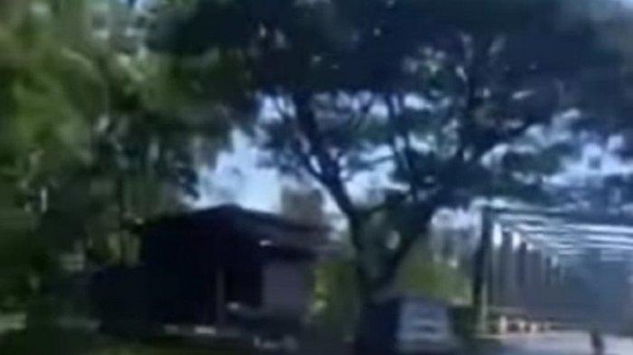 Kejadian di Majene, Penumpang Bawa Kabur Mobil Tabrak Pohon Saat Dikejar Warga