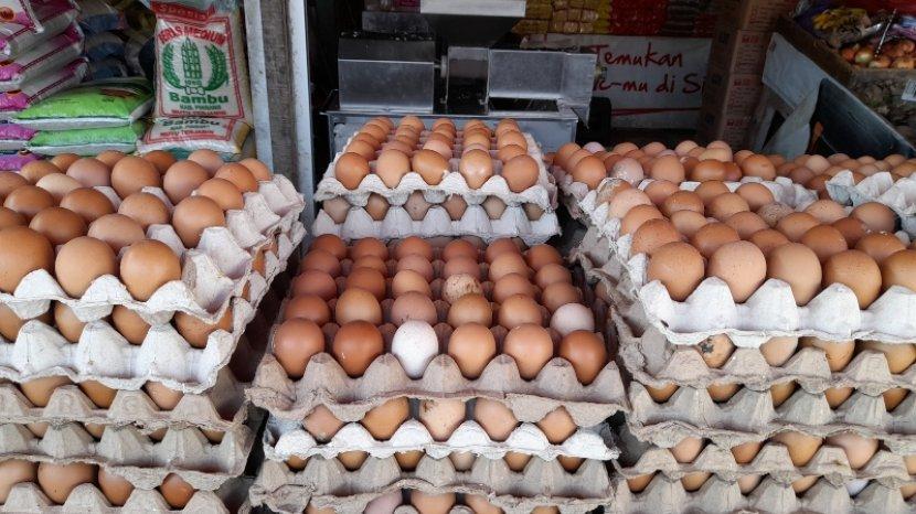 penjual-telur-ayam-ras-di-Pasar-Baru-Mamuju-Sulawesi-Barat-Sulbar.jpg