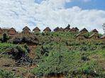 Sapo-Loko-berjejer-di-atas-bukit-Uhai-Sibali-Desa-Bulo-Kecamatam-Bulo-Polman.jpg