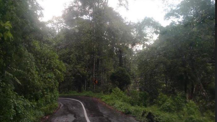 Akses Menuju Kawasan Wisata Ijen Masih Minim Rambu Lalu Lintas, Padahal Terbilang Ekstrem