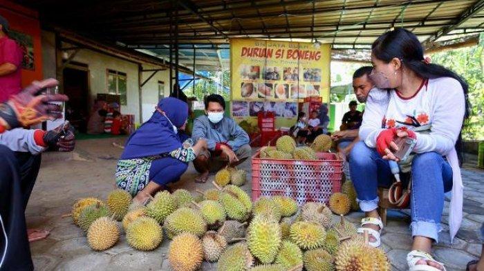 Penggemar buah durian Boneng Banyuwangi mulai diserbu penikmat durian