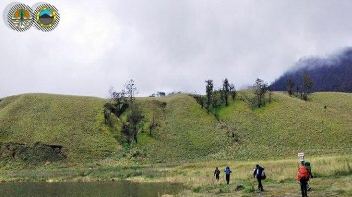 Pendakian Gunung Semeru Mulai Hari Ini Dibuka Kembali