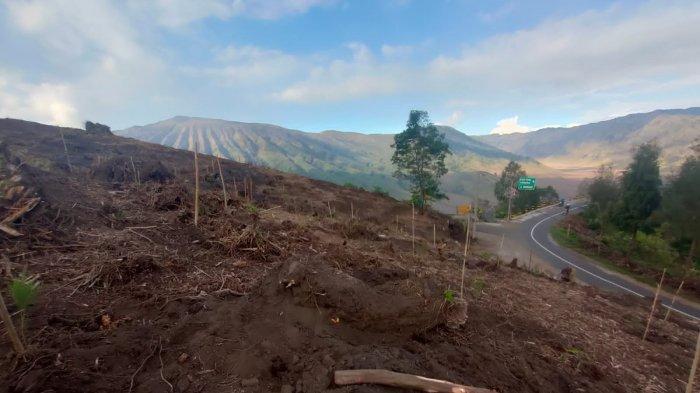 WALHI Jatim Kritik Rencana Pembangunan Jembatan Kaca di Kawasan TNBTS