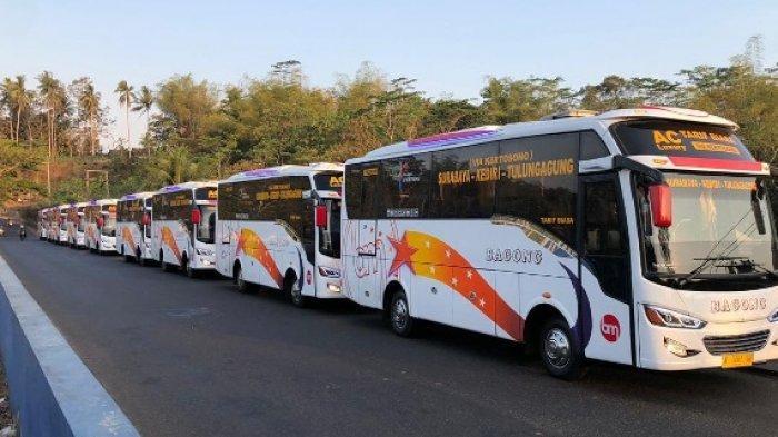Diluncurkan Bus Tulungagung - Surabaya via Tol Cukup Bayar Rp 25.000, 42 Armada Baru Siap Jalan