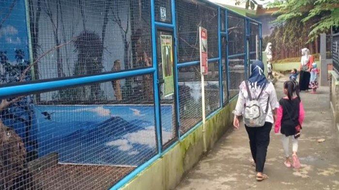 Umbul Square Madiun Buka Lagi, Pengunjung Diminta Patuhi Prokes