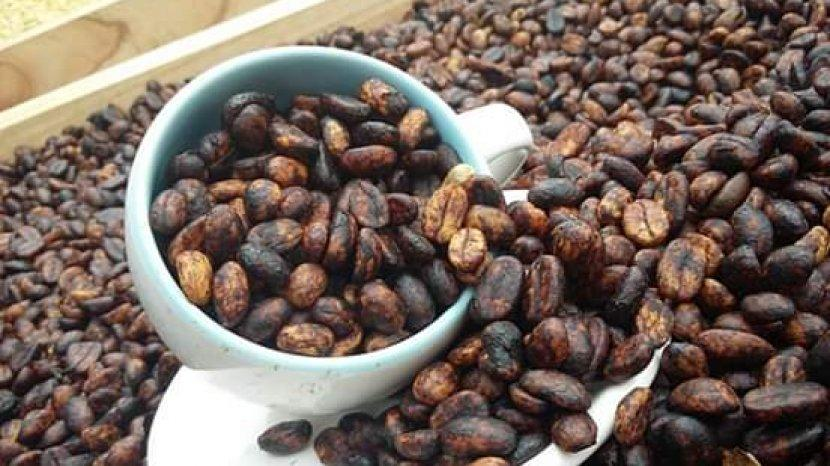 Indonesian Trade Promotion Center (ITPC) kenalkan kopi Indonesia lewat dialog  di Chicago, AS