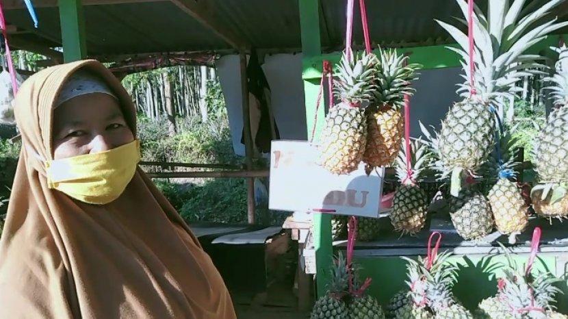 Penjual Buah Nanas Di Wisata Gunung Kelud Mulai Dapat Penghasilan