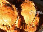 kare-kepiting-di-sentra-ikan-bulak-surabaya.jpg