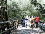 mangrove-wonorejo.jpg