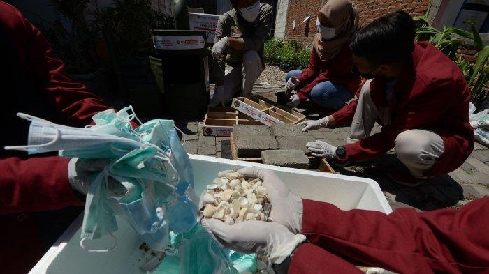 Mahasiswa Universitas Muhammadiyah Surabaya (UM Surabaya) menunjukkan tahapan proses mengelolah sampah masker dan cangkang pada warga RW 2 Kelurahan Kedungcowek, Bulak, Surabaya, Sabtu (13/8/2021). (Habibur Rohman)