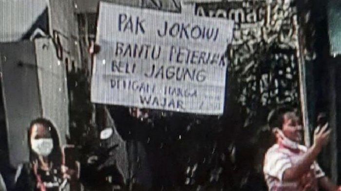 Peternak Ayam yang Bentangkan Poster Saat Kunjungan Presiden di Blitar Diundang Jokowi ke Istana