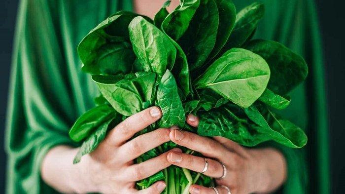 Manfaat dan Efek Samping Mengonsumsi Sayuran Hijau yang Perlu Anda Ketahui