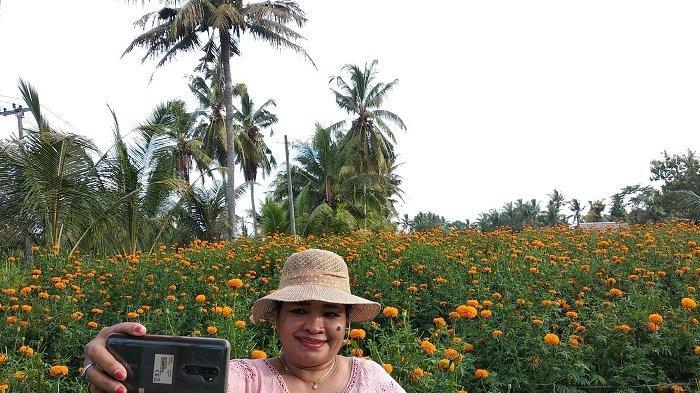 Selfie di Tengah Bunga Kebun Bunga Gumitir