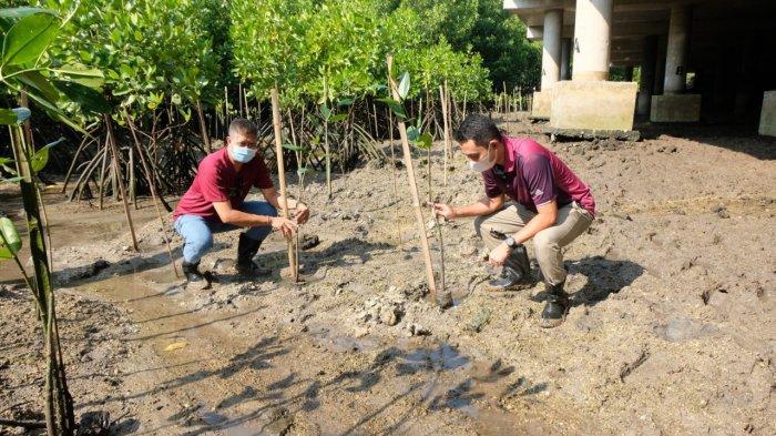 Dukung Pelestarian Alam, JR Bali Lakukan Penanaman 1.000 Bibit Mangrove