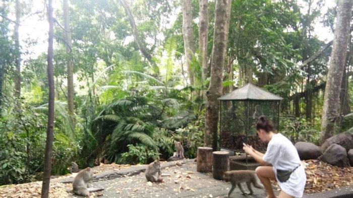 Pesona The Sacred Monkey Forest Sanctuary
