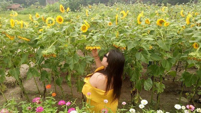 Wayan Dika Akan Segera Rilis Bunga Dari China