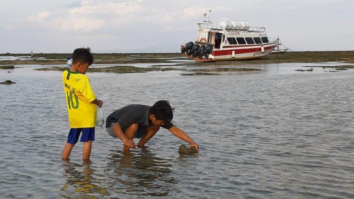 Air Laut Pantai Sanur Surut, Wisatawan Manfaatkan untuk Mencari Ikan